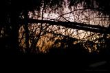 02/06/2012 - _MG_5128.jpg