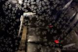 02/08/2012 - IMG_2292.jpg