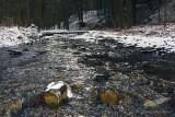 03/04/2012 - IMG_2361.jpg