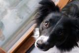 03/11/2012 - _MG_5350.jpg