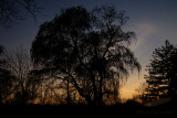 03/22/2012 - IMG_2424.jpg