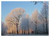 Winter Morning Jogging