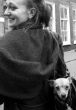 Girl with dog in purse