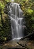 Berry Creek Falls (fit2)_5608Cnvt1+2,9-11Ps`0505231016.jpg