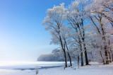 Hokkaido - Early Spring Color