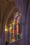 National Cathedral of Washington DC Portfolio