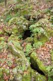Marianna Caverns