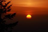 Urn-shaped Sun