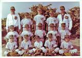 Majors Little League Baseball 1963