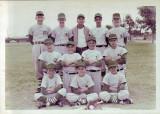 Pony League Baseball 1964