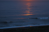 Orange-topped surf