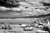 Coastal Beach