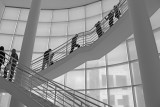 Motion on a Getty Staircase in Black and White