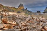 Storm Debris at Crook Point