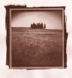 Alternative Process / Polaroid Transfer