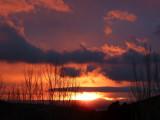 Pocatello Sunset P1050627.jpg