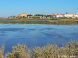 Marshland, Faro