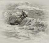 Struggling the Surf
