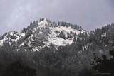 Alps-DSC_5262-800.jpg