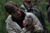 Owl whisperer