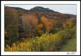 Western North Carolina mountains