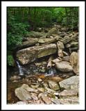 Wilson Creek Wilderness Area