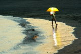 The Yellow Umbrella - Le parapluie jaune