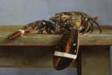 32. Lobster 12 x 17.5