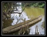African River - Cabinda