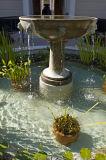 Fountain, East Garden