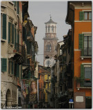 Verona 2008
