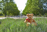 In the Park of Friendship.