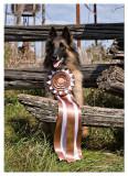 Tyra gets Bronze