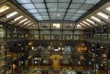 Jules ANDRE la Galerie de l'Evolution