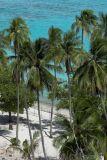 1107 Fences on the beach???