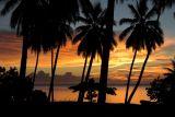 1141 A Dream Sunset