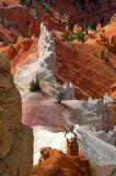 Canyon Closeup