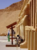 On patrol at the Hatshepsut Temple