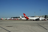 BRISBANE AIRPORT RF IMG_6591.jpg