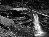 9th place - Ricketts Glen State Park