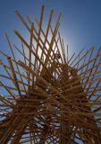 Starry Bamboo Mandala
