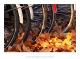 Leaving your bike behind