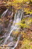 Guppy Falls