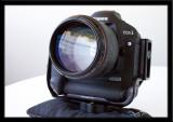 LARS2580.jpg