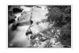 River Circles (b&w ver)