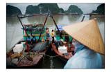 Ha Long fishing harbor 1