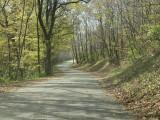 Yellow Banks road
