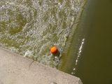 Orange ball demonstrates the dangerous conditions