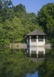 Summer At The Duck Pond