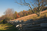Parkway Fence-Fall Afternoon